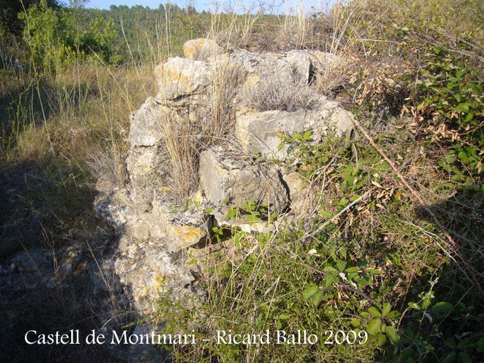 castell-de-montmari-090929_506