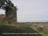 Restes del castell de Montornès de Segarra.