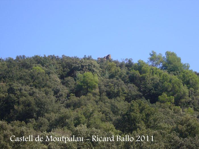 castell-de-montpalau-110909_531