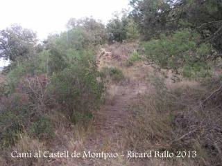 Camí al Castell de Montpaó – Ribera d'Ondara