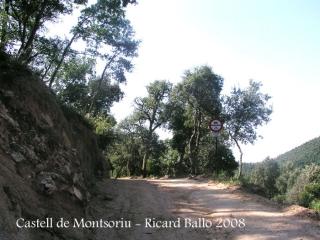 Camí a peu al castell de Montsoriu