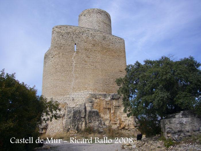 castell-de-mur-081009_505