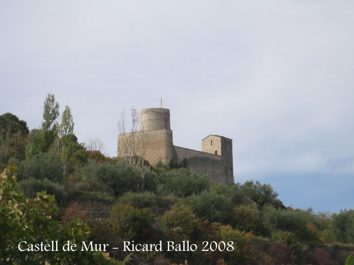 castell-de-mur-081009_702