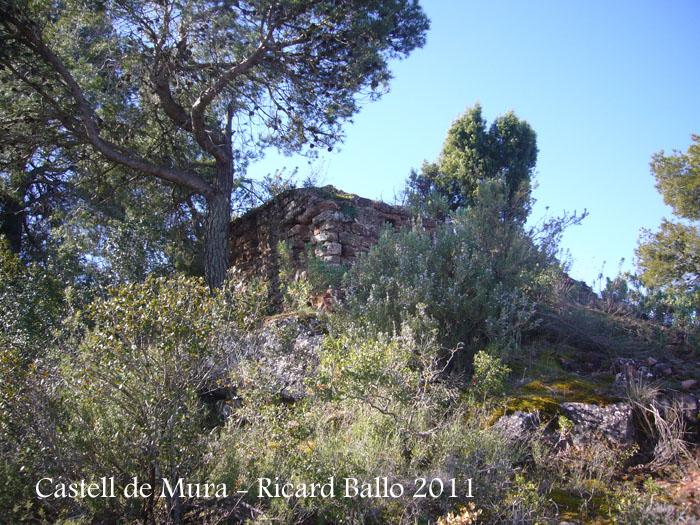 castell-de-mura-110402_509