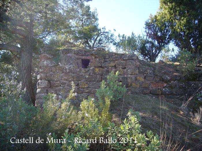 castell-de-mura-110402_510