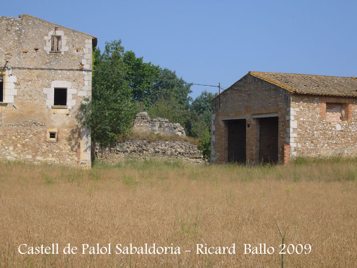 castell-de-palol-sabaldoria-090624_503