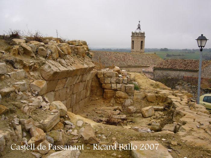 castell-de-passanant-070217_507