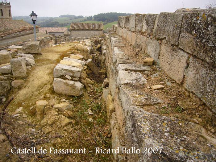 castell-de-passanant-070217_511