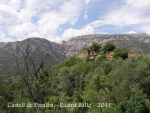 Castell de PERALTA - (PIFIA)