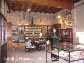 castell-de-palau-solita-i-plegamans-060409_11