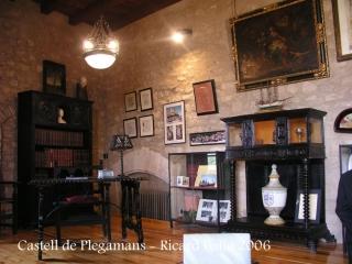 castell-de-palau-solita-i-plegamans-060409_13