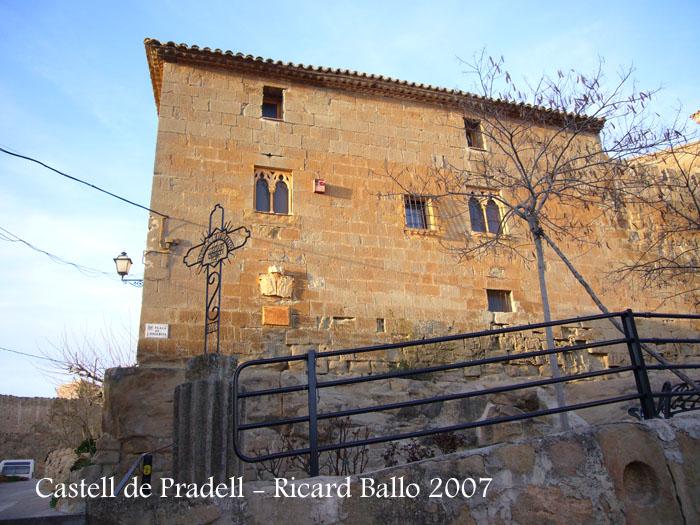castell-de-pradell-de-sio-070203_519