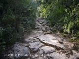 Camí al castell de Prenafeta.