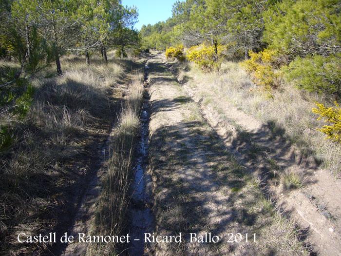 castell-de-ramonet-110319_501