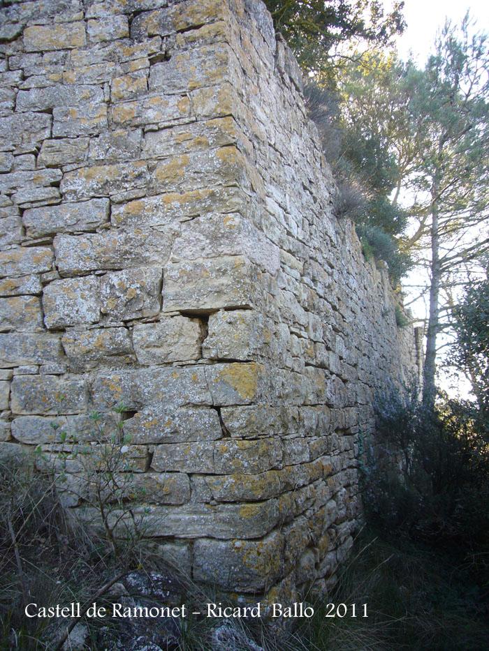 castell-de-ramonet-110319_509