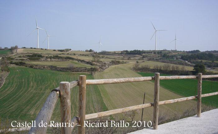 castell-de-rauric-100320_517