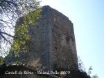 castell-de-ribes-091003_549