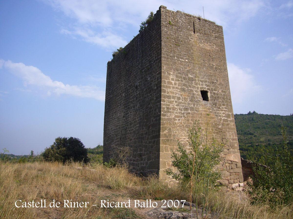 castell-de-riner-070828_501