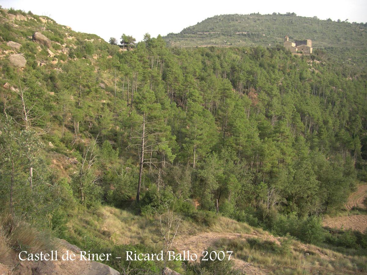 castell-de-riner-070828_707