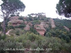 castell-de-rosanes-081127_505