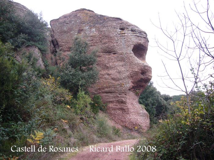 castell-de-rosanes-081127_501