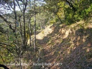 un camí planer que serpenteja per la muntanya.