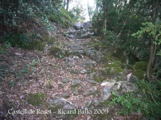 pedres de l'antic camí medieval