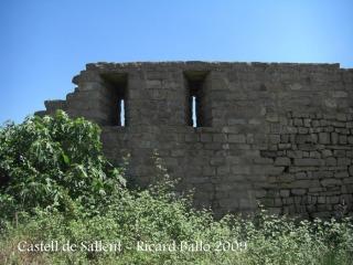 castell-de-sallent-090530_746