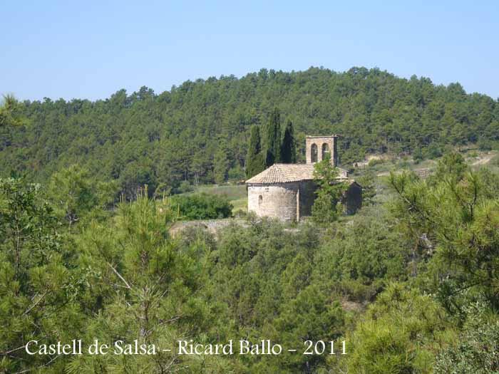 castell-de-salsa-110524_553