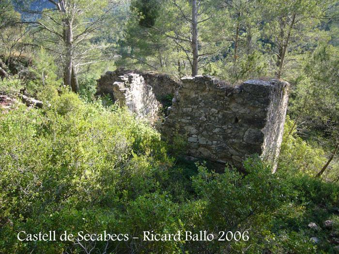 castell-de-secabecs-100612_508