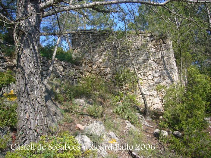 castell-de-secabecs-100612_510