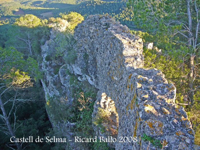 castell-de-selma-081113_503bis