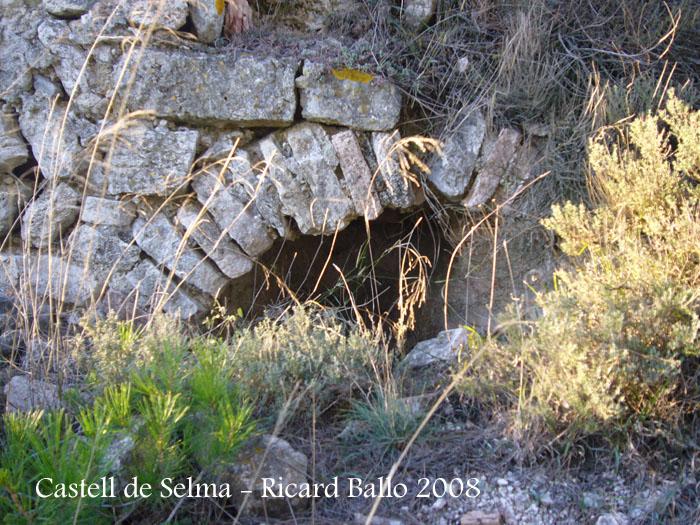 castell-de-selma-081113_532