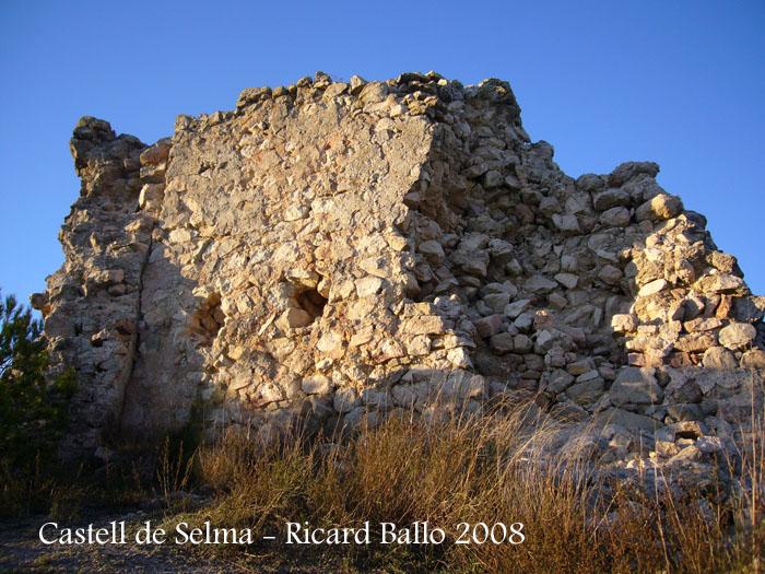 castell-de-selma-081113_534bis