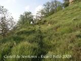Castell de Sentfores