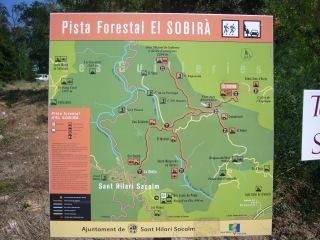 Camí d'accés al castell de Solterra