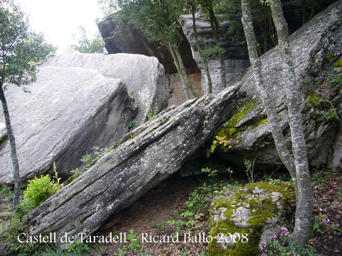 castell-de-taradell-080614_517