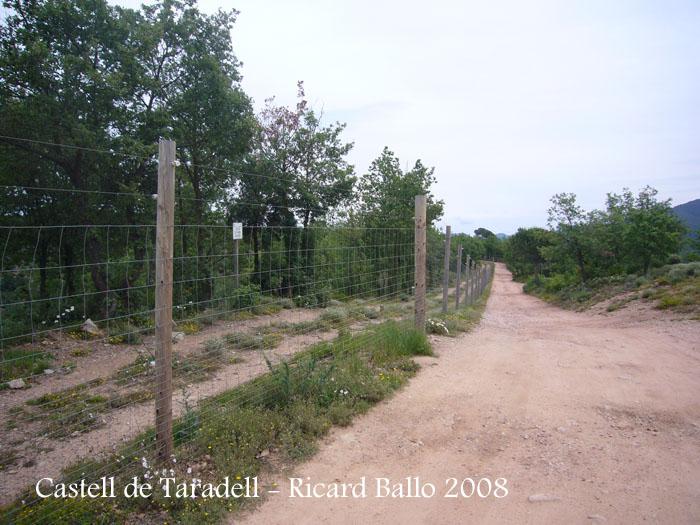 castell-de-taradell-itinerari_507