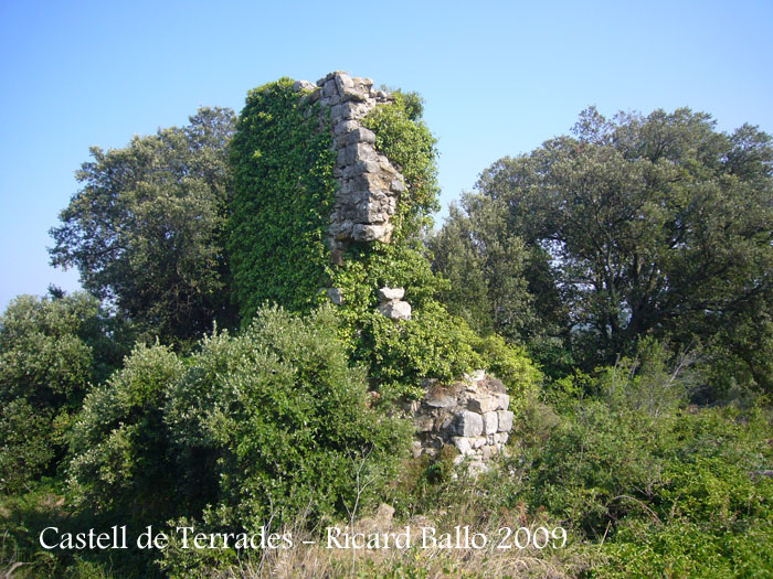 castell-de-terrades-090624_503