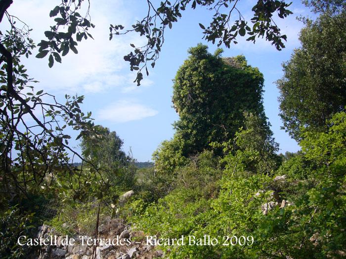 castell-de-terrades-090624_505