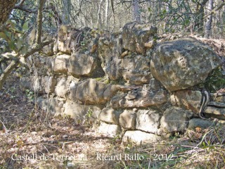 castell-de-torroella-120225_518bisblog