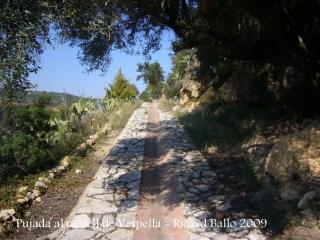 Castell de Vespella - Camí d'accés.