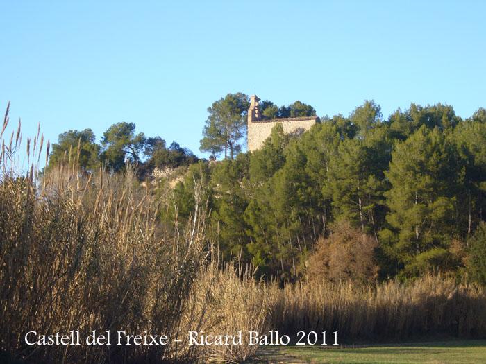 castell-de-freixe-110109_502