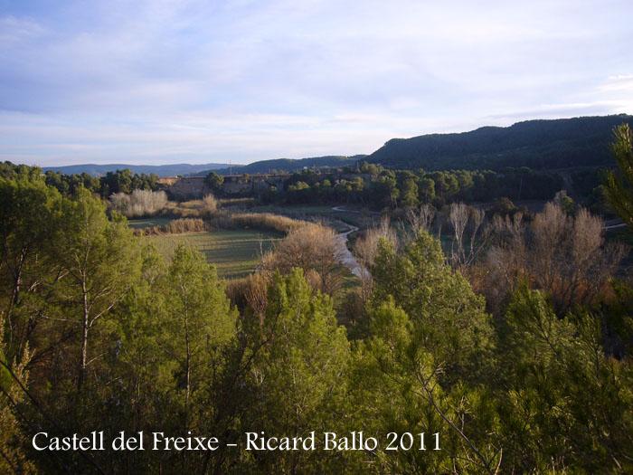 castell-de-freixe-110109_505