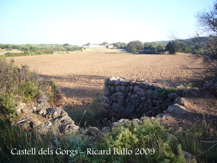 castell-dels-gorgs-090801_502
