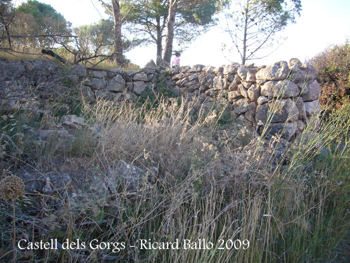 castell-dels-gorgs-090801_505