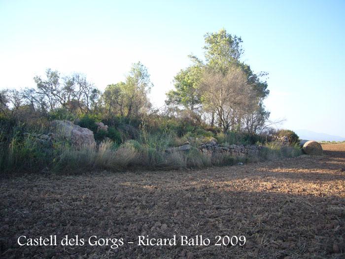castell-dels-gorgs-090801_507