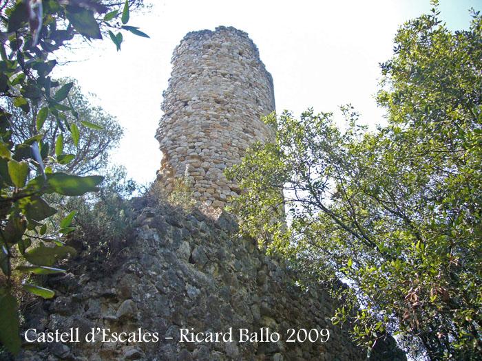 castell-d-escales-090624_511bis
