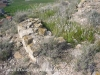 Castell d'Escarp - Una vista de les minses restes que interpretem poden pertànyer a aquesta edificació.