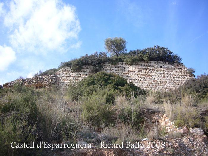 castell-d-esparreguera-081213_509